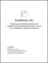 southeast-inc-appreciative inquiry practicum_Company of Experts